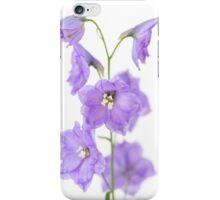 Delphinium love iPhone Case/Skin