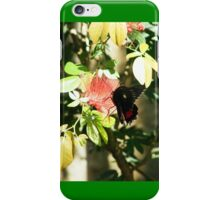 Pollinating Butterfly iPhone Case/Skin