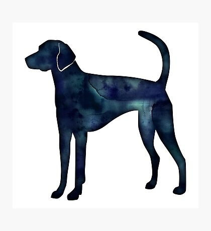 American Foxhound Black Watercolor Silhouette Photographic Print