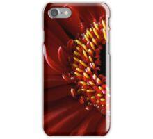 Red Gerbera flower macro iPhone Case/Skin