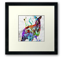 Kangaroo Grunge Framed Print