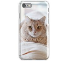 Sylvester on the couch iPhone Case/Skin