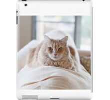 Sylvester on the couch iPad Case/Skin