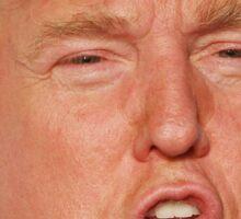 DONALD TRUMP FACE: MAKE AMERICA GREAT 2016 Sticker