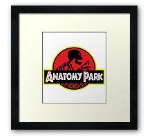 anatomy park Framed Print
