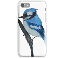 Blue Jay Wild Bird Contemporary Acrylic On Canvas Board Painting White Edit iPhone Case/Skin