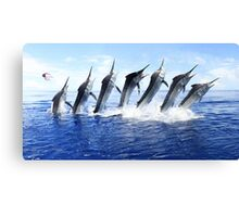 Black Marlin Jump Sequence Canvas Print