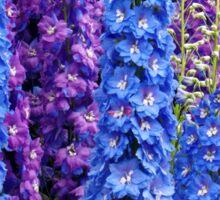 Blue and Purple Delphinium Border Sticker
