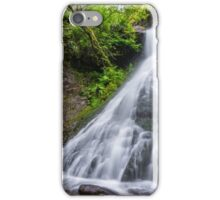 Sweeney Mine Falls - Washington iPhone Case/Skin