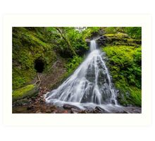 Sweeney Mine Falls - Washington Art Print
