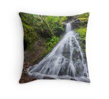 Sweeney Mine Falls - Washington Throw Pillow