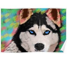 Siberian Husky Dog Colorful Art Water Color Paint Poster