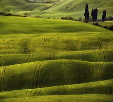 Hills of Toscany by JBlaminsky