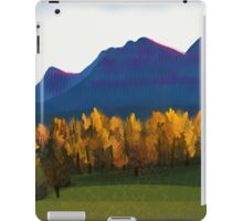 IPad Art - From the lookout iPad Case/Skin
