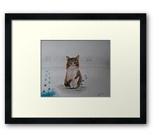 It was the dog Framed Print