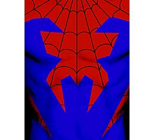 House of M Spider-Man Photographic Print