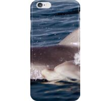 Calf surfacing, Gulf St Vincent iPhone Case/Skin