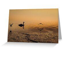Three birds at sunset Greeting Card