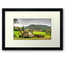 Rusty Trusty With His Mates In The Paddock Framed Print