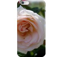 ROSE FOR LOVE iPhone Case/Skin