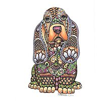Ornate Pen & Ink Basset Hound Photographic Print