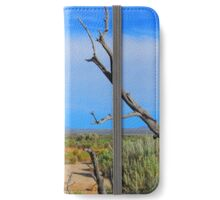 Christmas Valley  iPhone Wallet/Case/Skin