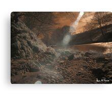 Infrared Landscape Raw Canvas Print