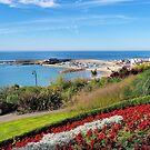 Gardens Overlook - Lyme Regis by Susie Peek