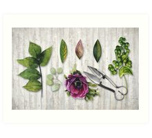 Botanica I Botanical flower, leaf and berry nature study Art Print