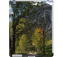 Road in the Alps iPad Case/Skin