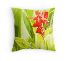 Splash of Colour - Canna Throw Pillow