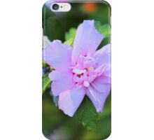 Purple Rose Of Sharon iPhone Case/Skin