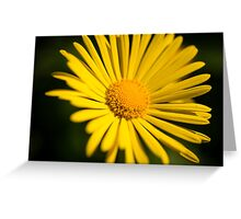 Sunburst Greeting Card