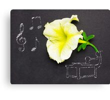 Beauty of music. Canvas Print