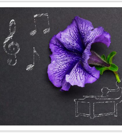 Beauty of music. Sticker
