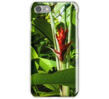Tropical Impressions - Red Ginger Flower, Framed in Lush Jungle Green iPhone Case/Skin