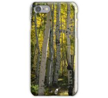 The Beckoning iPhone Case/Skin
