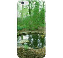 Hylas Pool iPhone Case/Skin