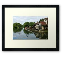 Fish and Eels Framed Print