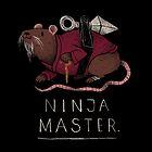 ninja master by louros