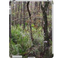 Cypress Arch iPad Case/Skin
