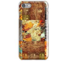 Autumn Colori iPhone Case/Skin