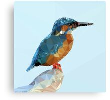Triangular Kingfisher Canvas Print