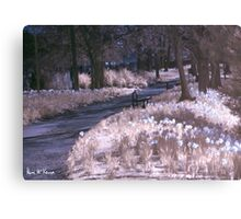 Infrared Park Canvas Print
