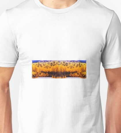 """Circle Drive"" © 1979-2008 Brad Michael Moore T-Shirt"