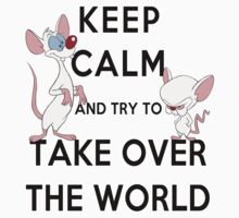 Keep Calm and Try to Take Over the World Kids Clothes