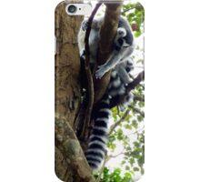 The Curious Lemur iPhone Case/Skin