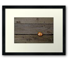 Nemo Found Framed Print