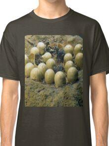 dino's eggs Classic T-Shirt