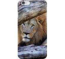 The Regal Lion iPhone Case/Skin